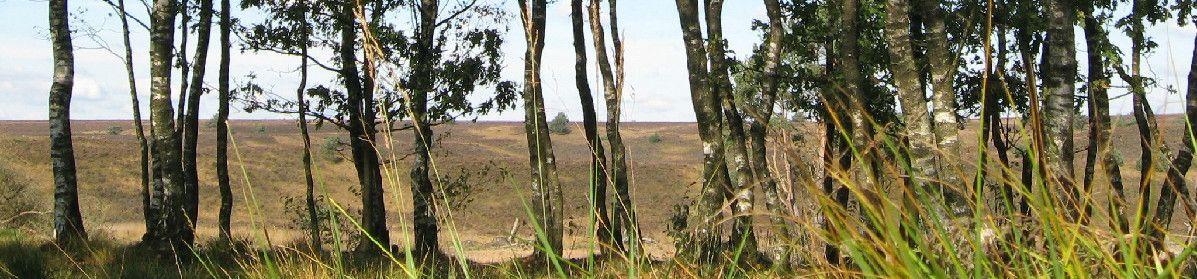 Natuurzorg Veluwe-Vallei